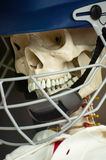 Skull protection Royalty Free Stock Photography