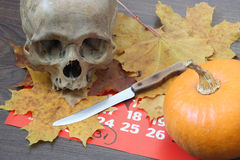 Skull and pumpkin. Stock Photos