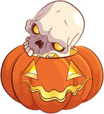 Skull and Pumpkin. Illustration of skull and pumpkin Royalty Free Stock Images