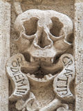 Skull. Purgatory church. Monopoli. Apulia. Stock Image