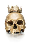 Skull Queen with a crown of jaw. A human skull of a girl with a crown of jaw on white background Stock Image