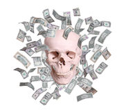 Skull in rain of dollars isolated Royalty Free Stock Images