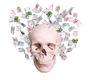 Skull in rain of euros Royalty Free Stock Image