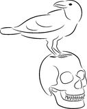 Skull and raven Stock Images