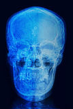 Skull x-rays image with computer chip and circuit royalty free stock image