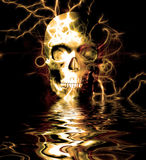 Skull Reflection Stock Image