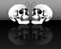 Skull Reflection Royalty Free Stock Images