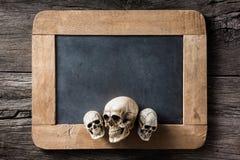 Skull at the rim of blank slate Royalty Free Stock Photos