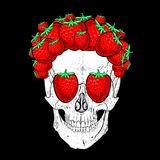Strawberry Skull stock photos