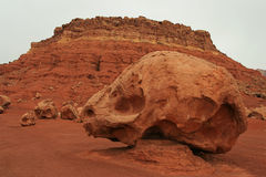 Skull rock. Vermilion Cliffs, northern Arizona Royalty Free Stock Images