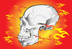 Skull rock and fire Stock Photo