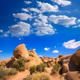 Skull rock in Joshua tree National Park Mohave California Royalty Free Stock Image