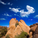 Skull rock in Joshua tree National Park Mohave California Stock Images