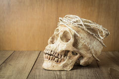 Skull with rope still life on wood background Stock Photo