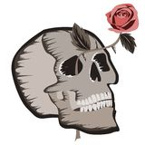 Skull with rose. Abstract illustration of skull with beautiful rose Stock Photos