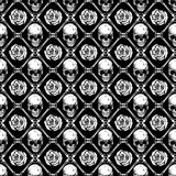 Skull_rose_background 库存例证