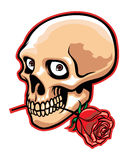 Skull and rose Royalty Free Stock Image