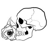 Skull with Rose. Hand drawn skull with rose Royalty Free Stock Images