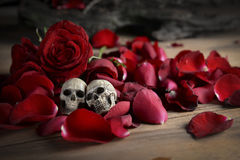 skull and rose to the concept of love Royalty Free Stock Images