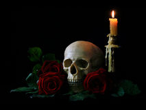 Skull with roses and candle Stock Image