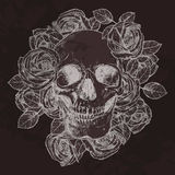 Skull And Roses On Chalkboard. In Sketch Style Stock Photography