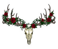 Skull and Roses label design Royalty Free Stock Photography