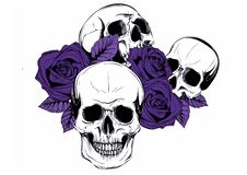 A human skull with roses on white background stock illustration