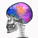 Skull. Rtg of human skull with galaxy Royalty Free Stock Photo