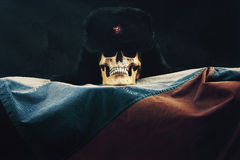 Skull with Russian Federation Flag and old russian Uschanka Royalty Free Stock Images