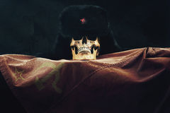 Skull with Russian Flag and old Uschanka Royalty Free Stock Photo