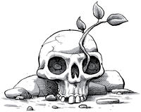 Skull Sapling Royalty Free Stock Photos