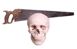 skull with saw royalty free stock images