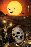 Hallowen and full moon. Skull and scary scene for Halloween with full moon Royalty Free Stock Images