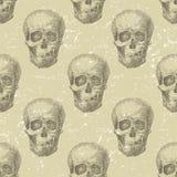 Skull seamless Stock Photos