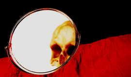 Skull seen in a mirror Royalty Free Stock Images