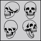 Skull  set Royalty Free Stock Photo