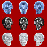 Skull-Set - isolated Stock Image