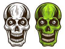 Skull set of two styles monochrome and colored. Vector detailed illustration isolated on white background Royalty Free Stock Photo
