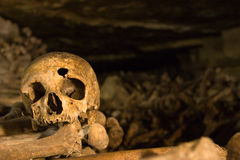 Skull Shot. Old skull with hole in forehead sitting on bones Stock Images