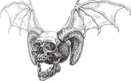 Skull side and horns and wings Royalty Free Stock Photography