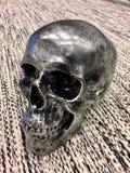 Skull sitting on a carpet Stock Image