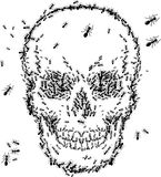 Skull sketch design with ant Stock Image