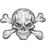 Skull sketch design Stock Image