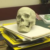 Skull. On sketch pads stock images