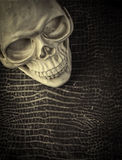 Halloween background Skull and Skin Stock Photo