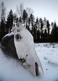 Skull of a slaughtered horse lying in stone in snow.  stock photos