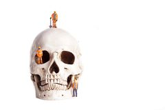 Skull and small workers Royalty Free Stock Photography