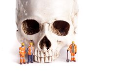 Skull and small workers Stock Images
