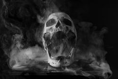 Skull in smoke. Skull surrounded by smoke in black and white