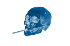 Skull Smoking Cigarette Royalty Free Stock Image